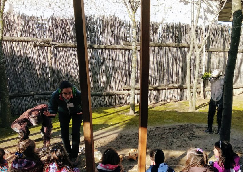 Arqueopinto: arqueología con niños en Madrid