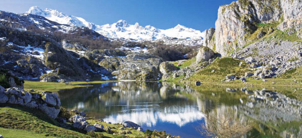 5 paseos por la naturaleza desde casa