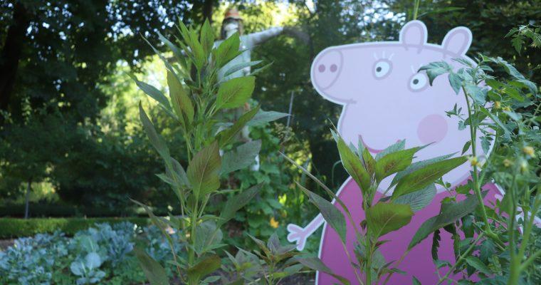 Buscando a Peppa Pig en el  Jardín Botánico de Madrid
