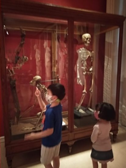 5 museos de Madrid para ir con niños